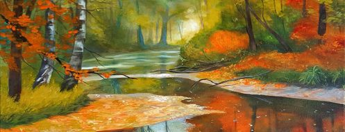cropped-fallforest.jpg